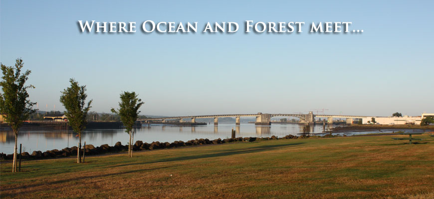 Where ocean and forest meet…